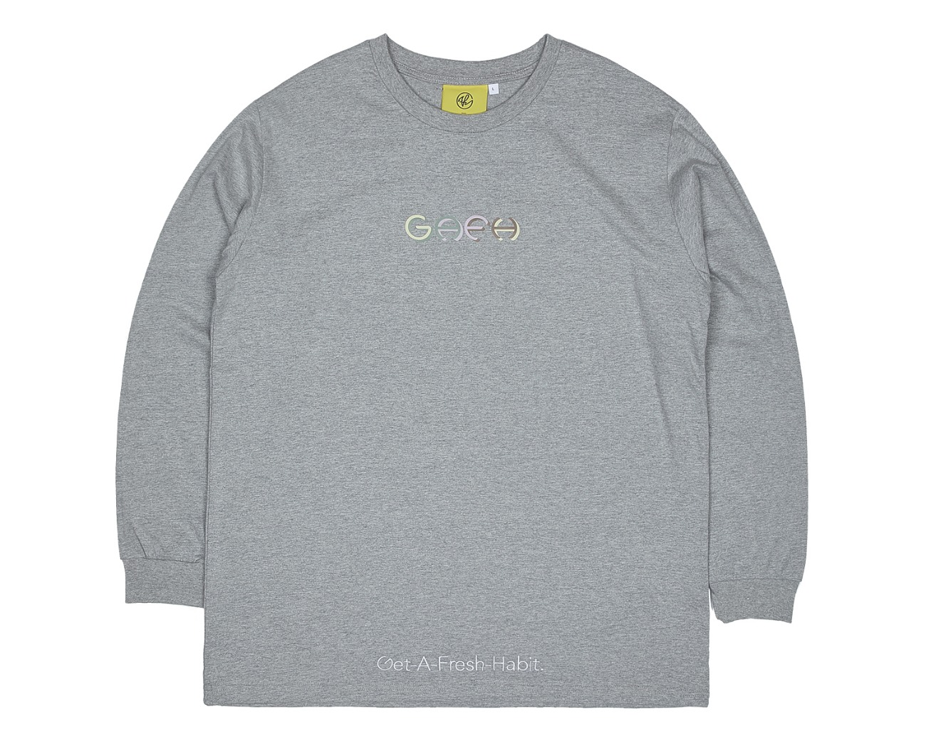 COLOR LOGO LONG SLV GRAY / GAFH